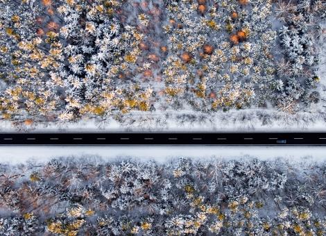 Puszcza Sandomierska w zimowej scenerii (okiem drona)